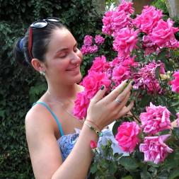роза болгария